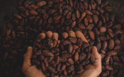 La historia del chocolate